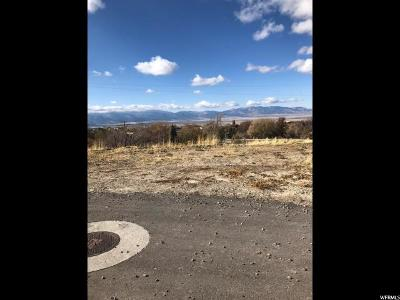 Tooele County Residential Lots & Land For Sale: 590 E Canyon Rd S