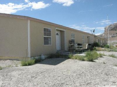 Tooele County Single Family Home For Sale: 1253 E Mountain Ridge Blvd