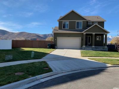Wasatch County Single Family Home For Sale: 120 E 2200 S
