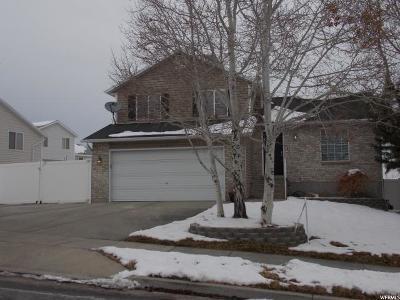 West Jordan Single Family Home For Sale: 5948 W Feldspar Way S