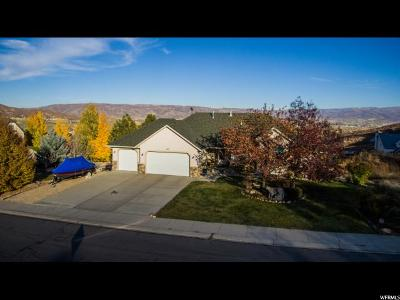 Wasatch County Single Family Home For Sale: 282 N 1400 W