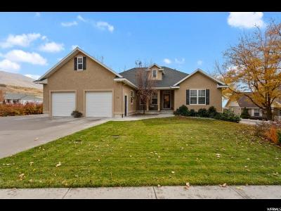 Smithfield Single Family Home For Sale: 918 Summit Dr