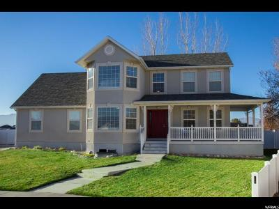 Eagle Mountain Single Family Home For Sale: 3955 N Summer Way