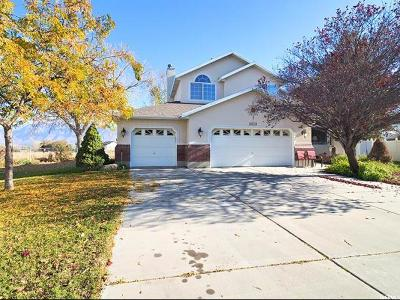 South Jordan Single Family Home For Sale: 10173 S Memorial Dr