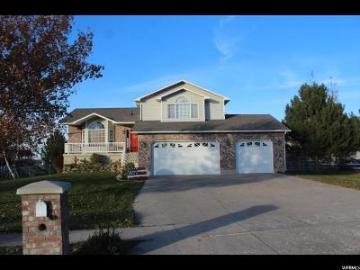 Nibley Single Family Home For Sale: 99 W 3650 S
