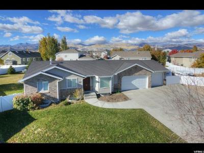South Jordan Single Family Home For Sale: 5819 W Spring Stone Cir S