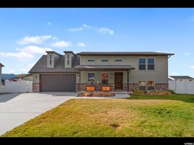 Nibley Single Family Home For Sale: 3323 S 1500 W