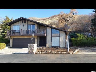 Brigham City Single Family Home For Sale: 915 S 1250 E