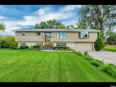 Payson Single Family Home For Sale: 893 W 400 N