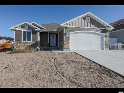 Tooele County Single Family Home For Sale: 817 S 480 W
