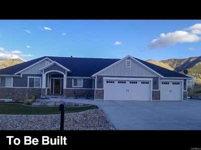 Willard Single Family Home For Sale: 393 S 200 W #3