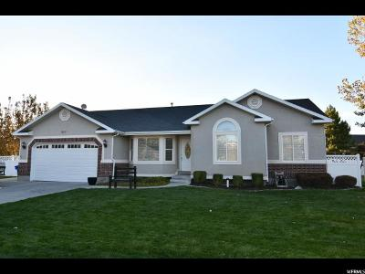 West Jordan Single Family Home For Sale: 7628 S Wood Mesa Dr
