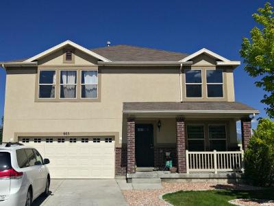 Lehi Single Family Home For Sale: 665 S Willow Trail Loop