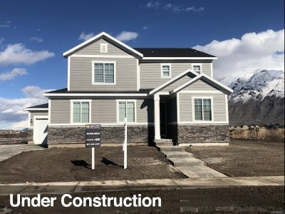 Springville Single Family Home For Sale: 746 W 1050 S #28