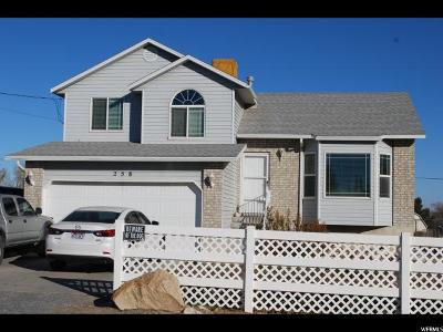 Tooele County Single Family Home For Sale: 258 W Durfee St