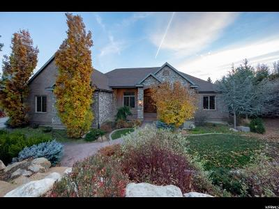 Alpine Single Family Home For Sale: 189 S Sequoia Cir
