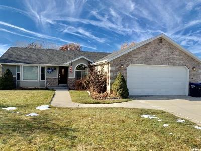 Salem Single Family Home For Sale: 622 S 100 E