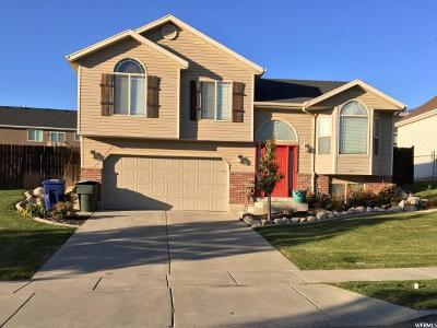 Weber County Single Family Home For Sale: 942 E 1500 N