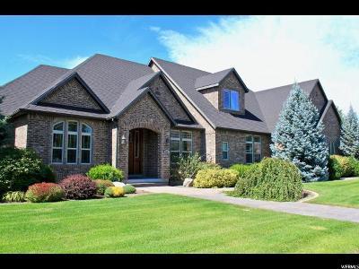 Single Family Home For Sale: 9871 N Crimson Ct E