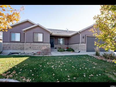 West Valley City Single Family Home For Sale: 4121 S 5400 W