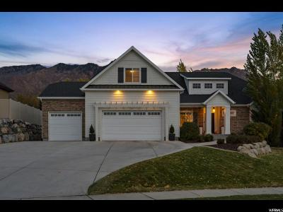 Alpine Single Family Home For Sale: 330 N Hunters Ridge Cir