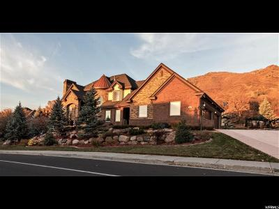 Weber County Single Family Home For Sale: 5074 S Skyline Dr E
