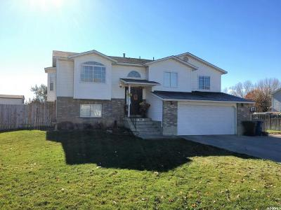 Nibley Single Family Home For Sale: 580 W 2700 S
