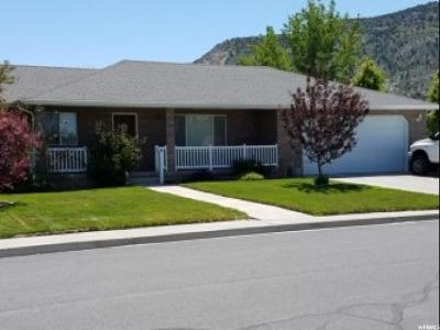 Nephi Single Family Home For Sale: 478 N 930 E