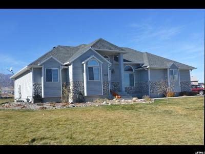 Grantsville Single Family Home For Sale: 123 Bluegrass Way