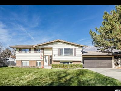 Orem Single Family Home For Sale: 698 W 1285 N