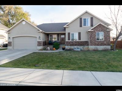 Springville Single Family Home For Sale: 216 E 2525 S