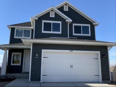 Spanish Fork Single Family Home For Sale: 767 N Stallion Drive #604