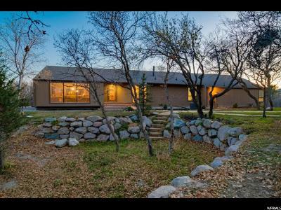 Single Family Home For Sale: 11295 N Tamarack Dr