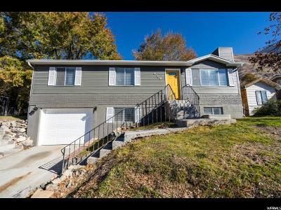 Provo Single Family Home For Sale: 2107 Dakota Ave