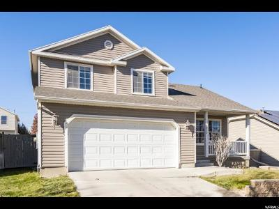 Eagle Mountain Single Family Home For Sale: 7839 N Apache Ln E