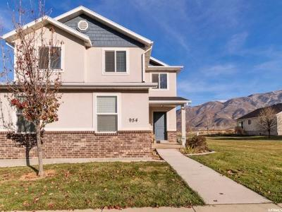 Santaquin Single Family Home For Sale: 954 N 90 W