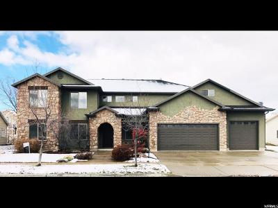 Davis County Single Family Home For Sale: 2074 W Lonestar Dr