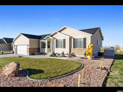 Tooele County Single Family Home For Sale: 373 E 1520 N