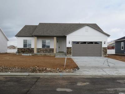 Hyrum Single Family Home For Sale: 1225 E 330 S