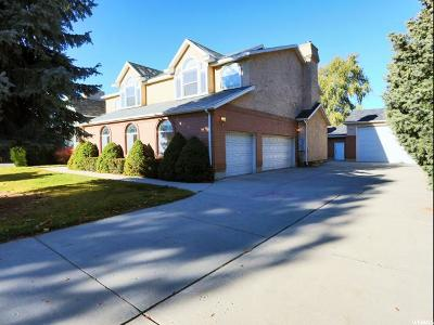 Sandy Single Family Home For Sale: 19 Birchtree Ln