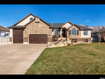 Weber County Single Family Home For Sale: 776 W 2825 N