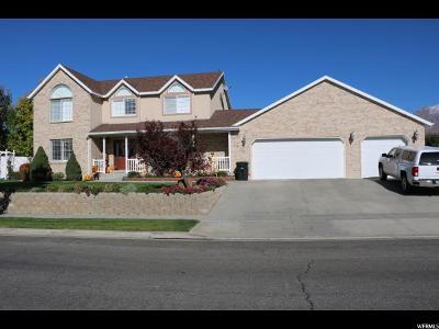 Spanish Fork Single Family Home For Sale: 1673 S 1100 E