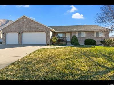 Pleasant Grove Single Family Home For Sale: 1342 N 450 W
