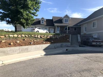 Preston Single Family Home For Sale: 197 S 3rd E