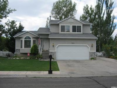 Stansbury Park Single Family Home For Sale: 766 Lakeview