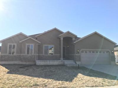 Springville Single Family Home For Sale: 1037 W 1500 S