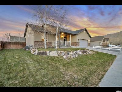 Eagle Mountain Single Family Home For Sale: 2107 E Easter Dr