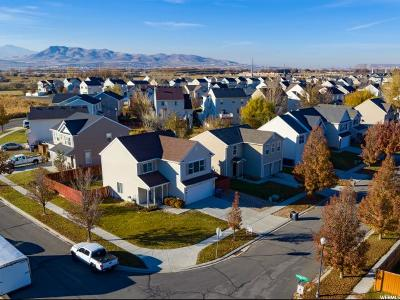 Lehi Single Family Home For Sale: 22 S Cameron St