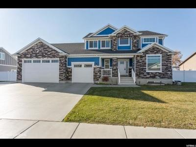 Davis County Single Family Home For Sale: 1234 S 2800 W