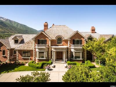 Springville Single Family Home For Sale: 2662 E Stonebury Loop Rd